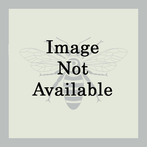 Marcus Vintage Onyx Lacey Floral - Beige/Cream