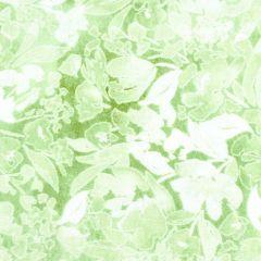 Free Spirit Crisp Petals Brisk - Limelight main