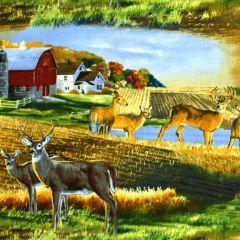 Elizabeth's Studio Whitetails Country Landscape - Multi main