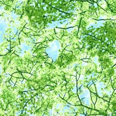 Timeless Treasures Nature Spring Trees - Green