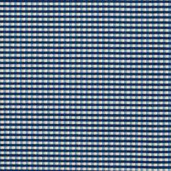 Marcus Temecula Treasures Mini Check - Blue main