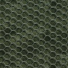 Studioe Bee Sweet Honeycomb Allover - Dark Gray main