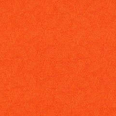P & B Bear Essentials 4 Patch - Orange main
