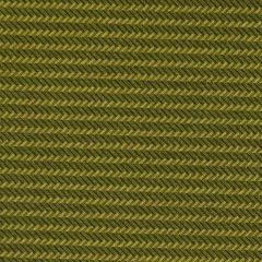 Andover Trinkets 2020 Zig Zag Stripe - Green main