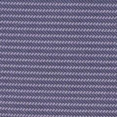Andover Trinkets 2020 Zig Zag Stripe - Purple main