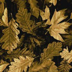 Kanvas Nature Walk Forest Foliage - Sepia main