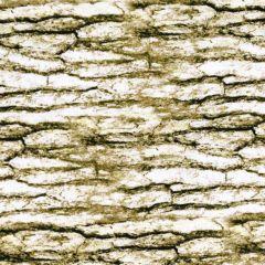 Kanvas Nature Walk Bark Texture - White Wash main