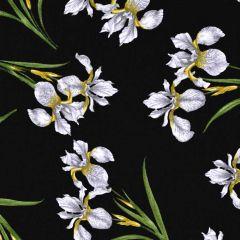 Benartex Magnificent Blooms  Iris - Black/Multi main