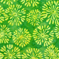 Maywood Studio Java Batiks Dandelion - Green/Yellow main